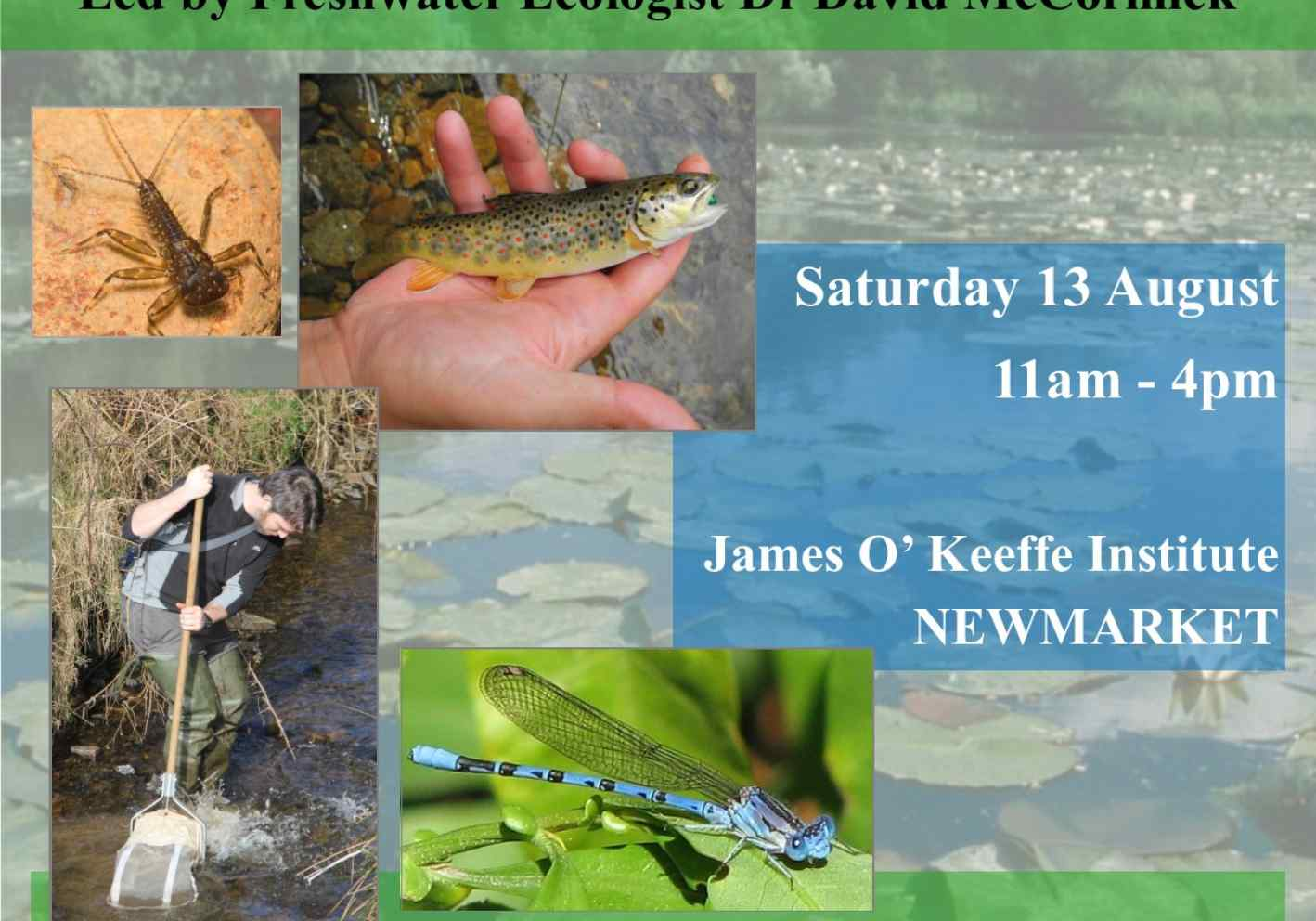 Freshwater ecology workshop