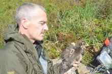 Stephen Murphy with 1st sat tagged harrier in the Ballyhouras